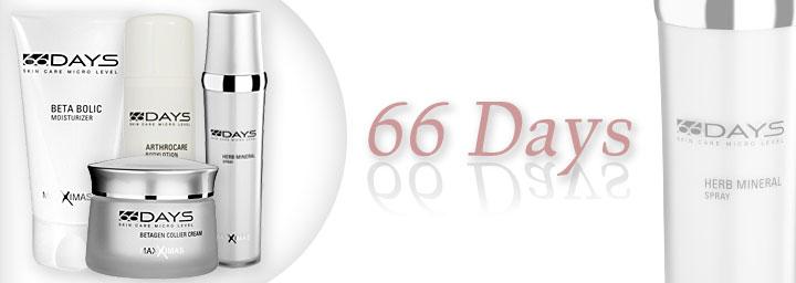 66 Days Konzept