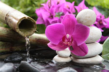 Kosmetikbehandlung Tahiti Flowers