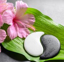 Die Ying Yang Kosmetikbehandlung